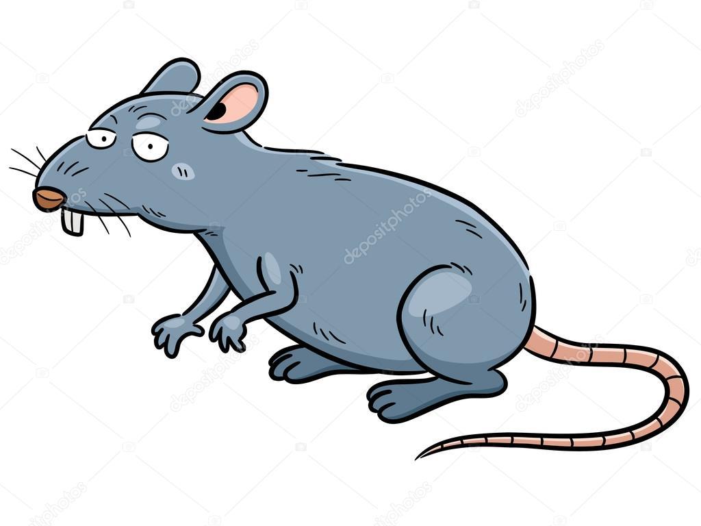 Dibujo Animado De La Rata