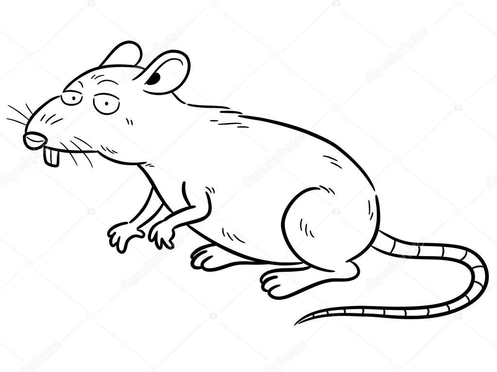 Dibujo Animado De La Rata — Vector De