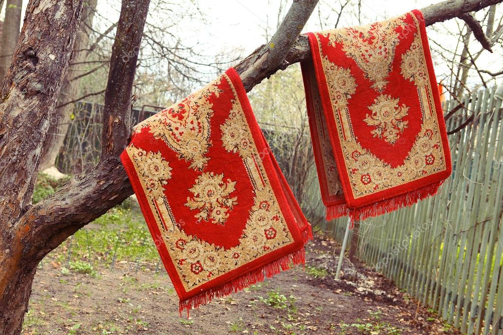 red persian rugs hanging on the old apple tree for dusting on th