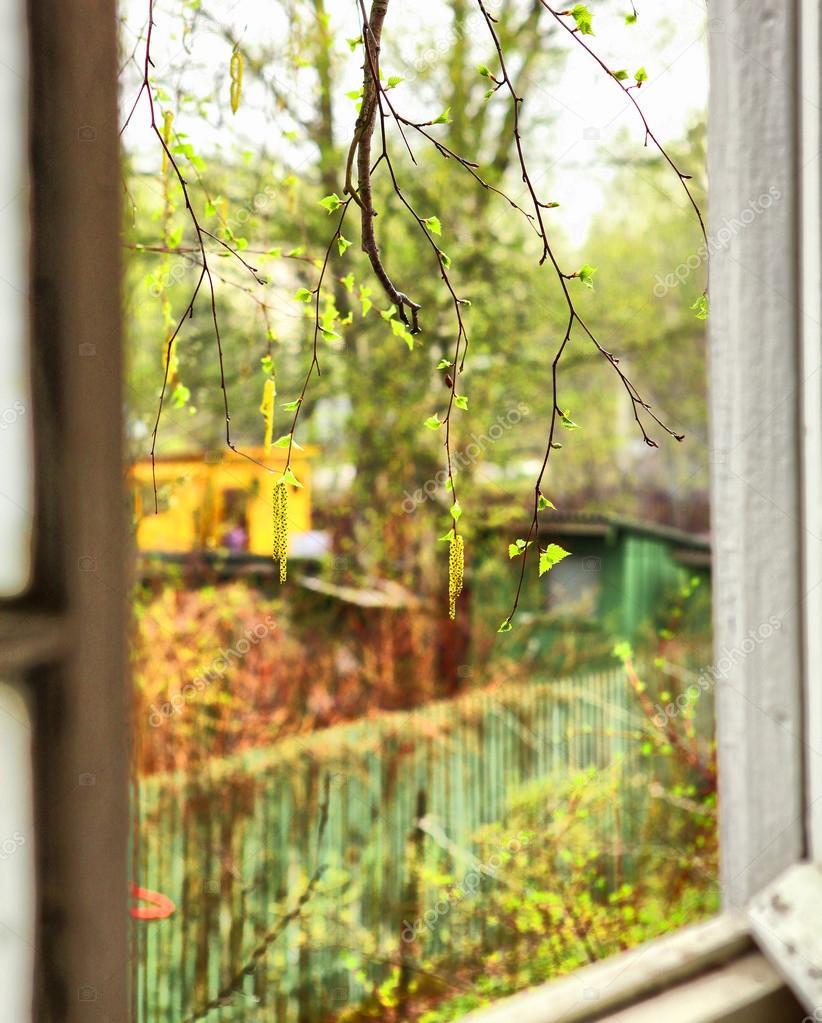 Blick aus dem fenster land  Land-Blick aus dem Fenster — Stockfoto #75200569