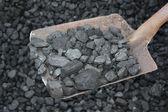 uhlí s lopatou
