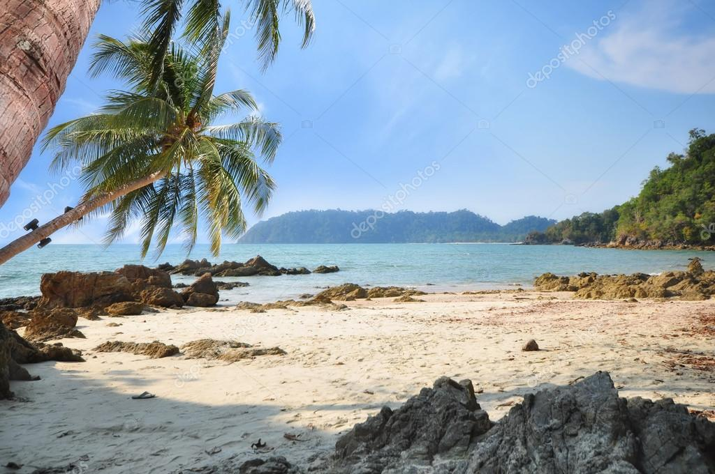 Фотообои View of tropical beach with coconut palm tree on blue sky background