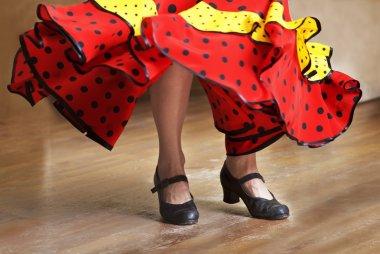 Fragment photo of flamenco dancer, only kegs cropped, Legs fragment photo of flamenco dancer, spanish