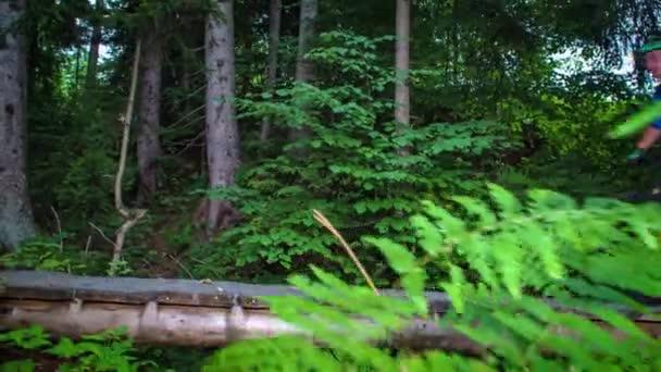 Dva cyklisté na horských kolech podél dřevěné plošiny uprostřed zeleného lesa