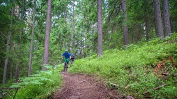 Radfahrer bergab auf einem Pfad mitten im Wald, Zeitlupe.