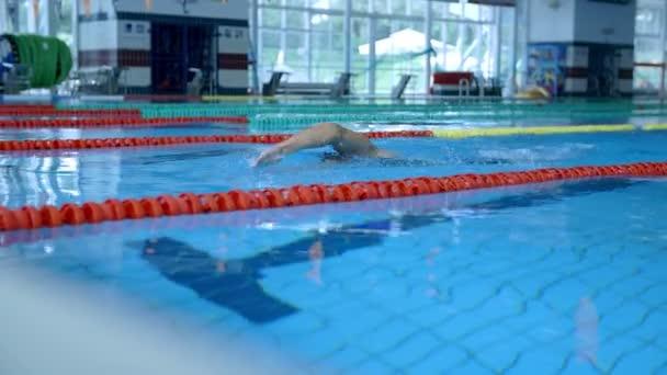 Profi úszó a képzés-medencében