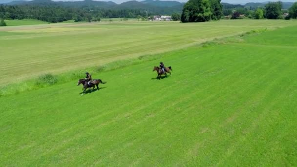 vojáci, kteří jezdí na koních do bitvy