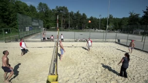 A grope of friends playing beach volley