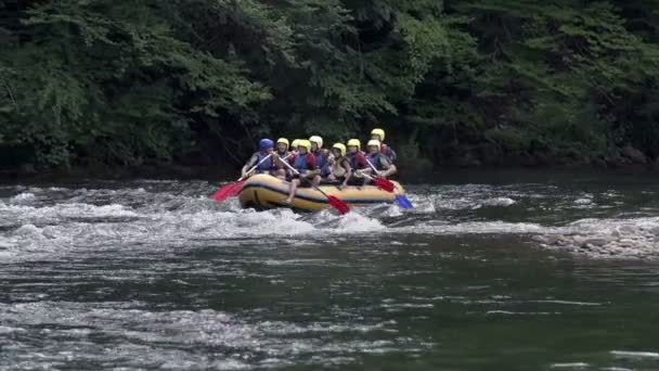 Rafting team simultaneously paddle on the river