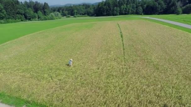 farmář na pole