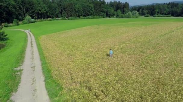 pšeničné pole, které je součástí majetku