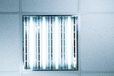 Bank of fluorescent lights