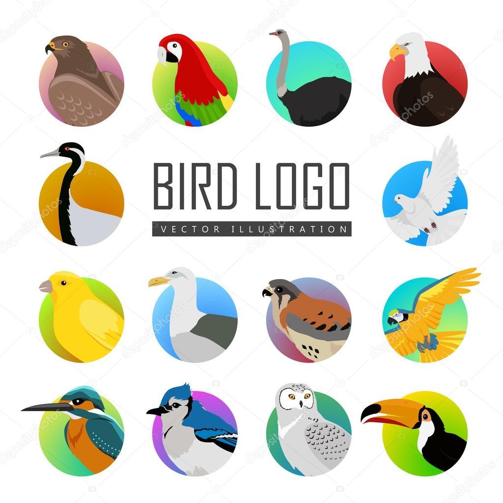 Set of Bird Logo Vector Illustration
