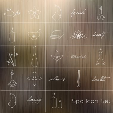 Various spa icons
