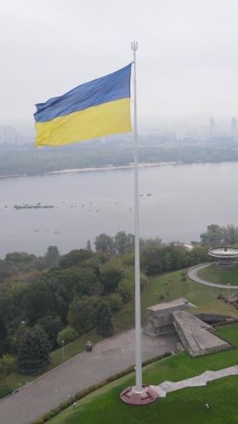 Národní vlajka Ukrajiny ve dne. Svislé video