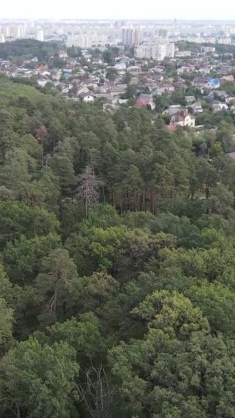 Légi kilátás a határ a metropolisz és az erdő. Függőleges videó