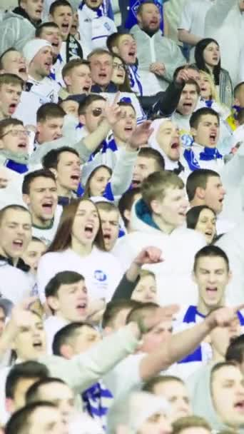 Fans in the stadium during the game. Vertical video