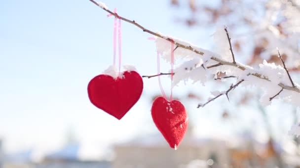 textilní srdce na větvi stromu pokryté lesem