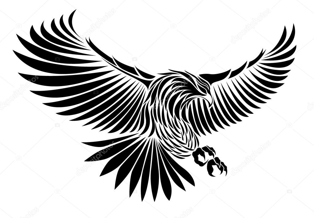 D Line Drawings Zip File : Egle silhouette vector — stock esancai