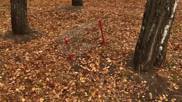 Rozbitý nákupní vozík ze supermarketu leží v podzimním parku. Žluté podzimní listy.