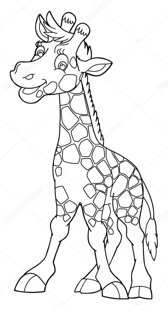 kleurplaat giraf stockfoto 169 agaes8080 54339925
