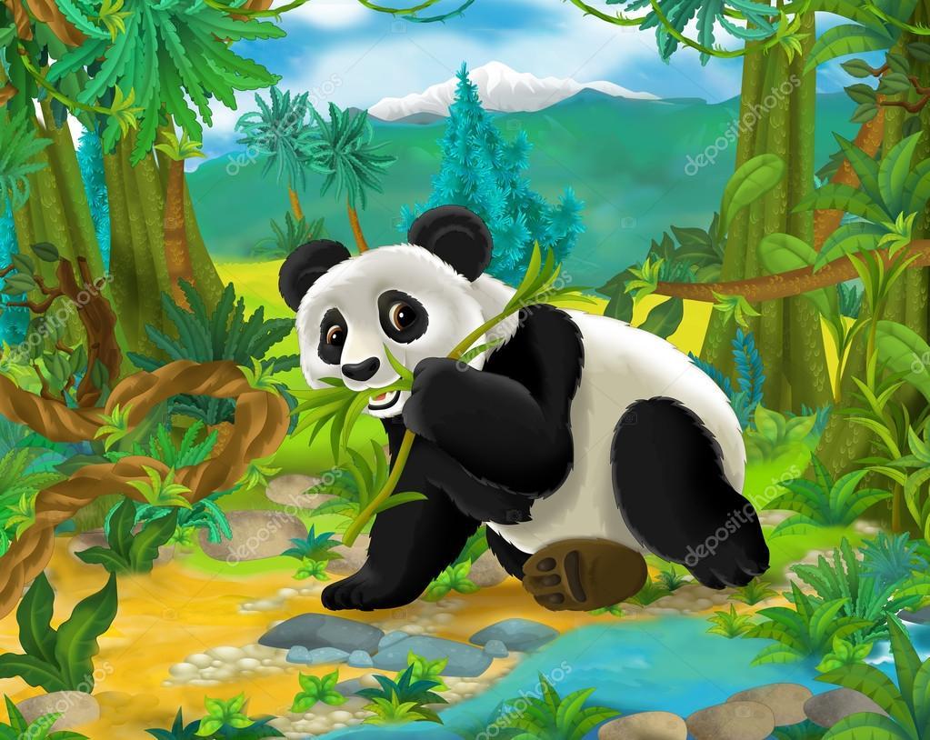 Oso Panda De Dibujos Animados