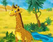Fotografia Cartone animato selvaggio della giraffa