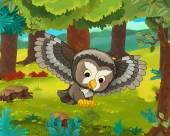 Kreslených zvířat - sova
