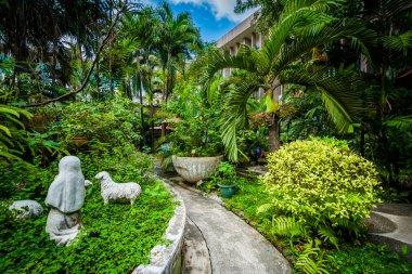 Gardens at the University of Santo Tomas, in Sampaloc, Manila, T