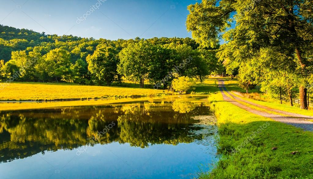 driveway and trees reflecting in a pond in the shenandoah valley