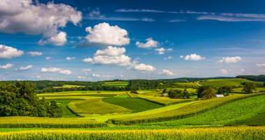 View of farm fields and rolling hills in Southern York County, P
