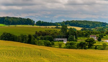 View of farm fields and rolling hills in rural York County, Penn