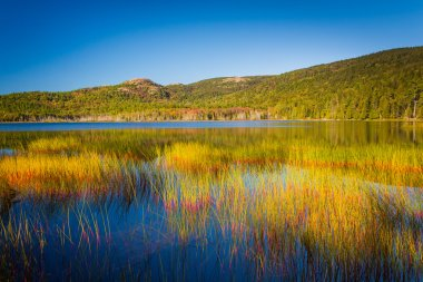 Upper Hadlock Pond in Acadia National Park, Maine.