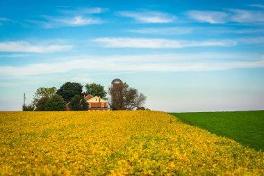Farm fields in rural Lancaster County, Pennsylvania.