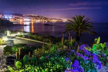 Flowers and view of Laguna Beach at night, from Heisler Park in