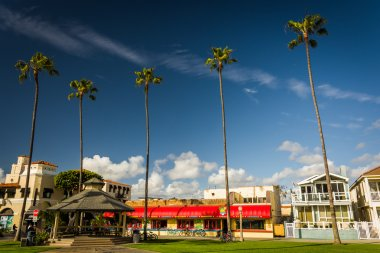 Palm trees and buildings along the boardwalk in Newport Beach, C