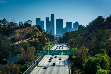 View of the 110 Freeway and Los Angeles Skyline from the Park Ro