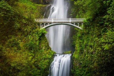 Multnomah Falls and bridge, in the Columbia River Gorge, Oregon.