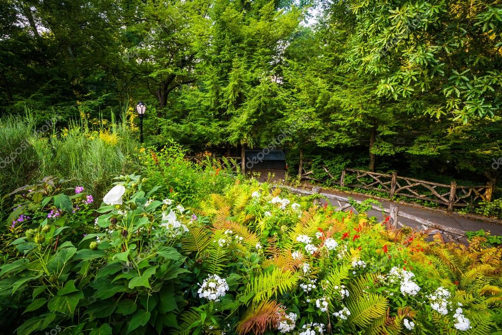 Path and flowers at the Shakespeare Garden, in Central Park, Man ...