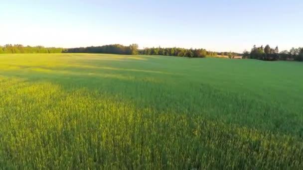Repül át nagy Farm szerves mező