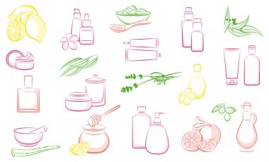 Set of vector natural cosmetics and ingredients