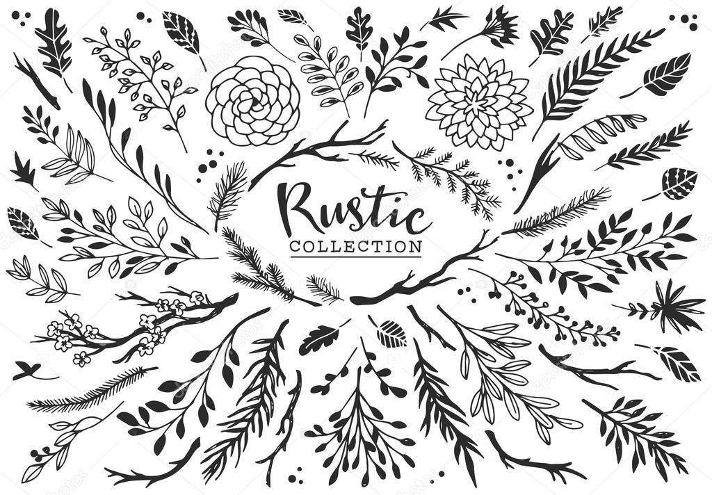 Rustic decorative plants and flowers