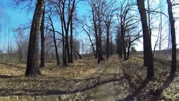 Kole Rider pohled na venkovské silnici