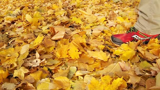 Muž na spadaném listí žluté.