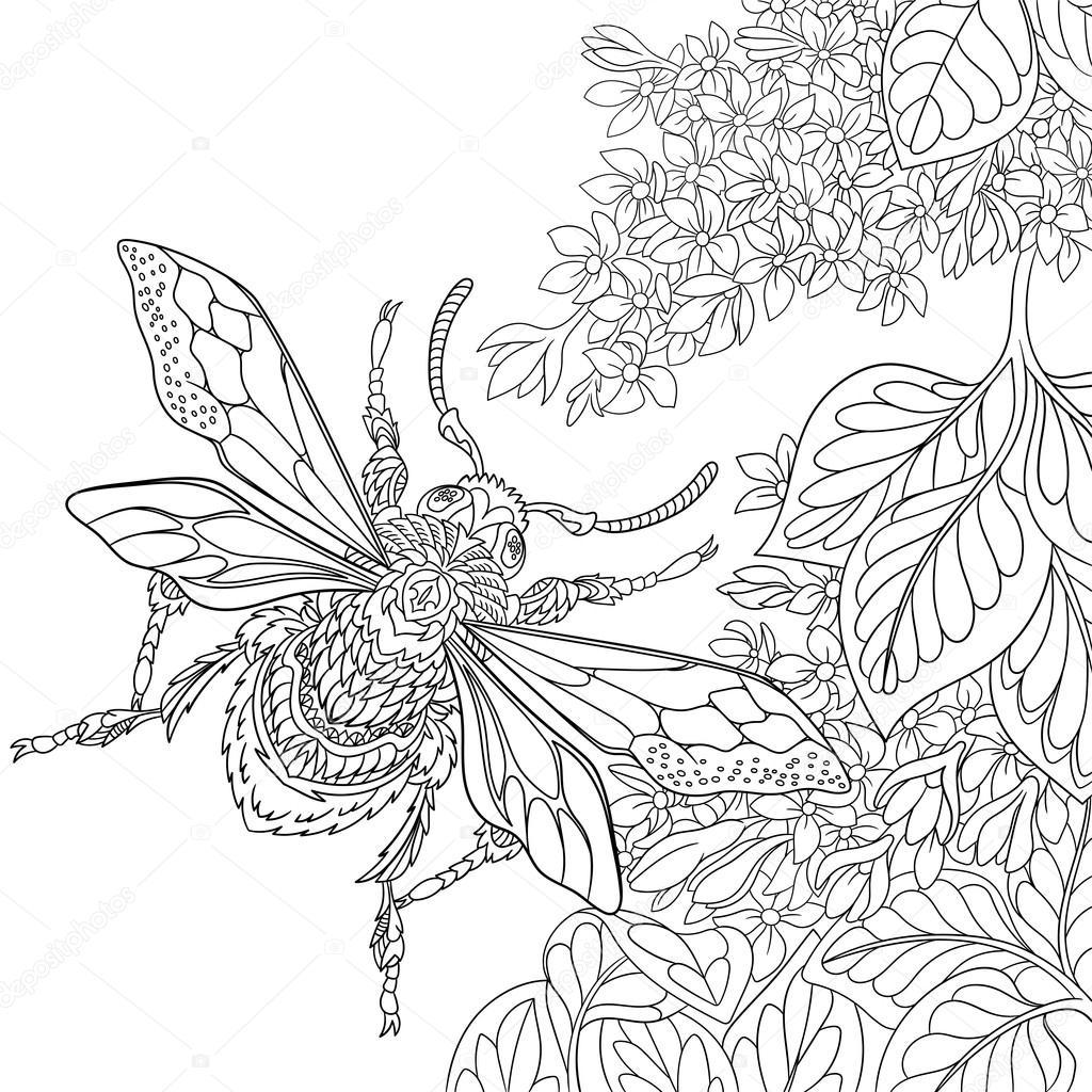 Zentangle Stilisierte Käfer Insekt Stockvektor Sybirko 100357104