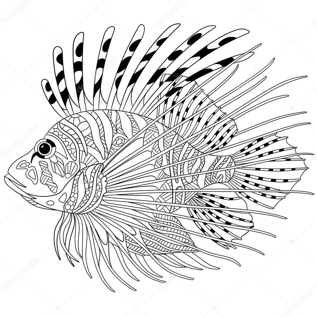 Zentangle Stylized Cartoon Zebrafish Lionfishpterois Volitans Isolated On White Background Sketch For Adult Antistress Coloring Page