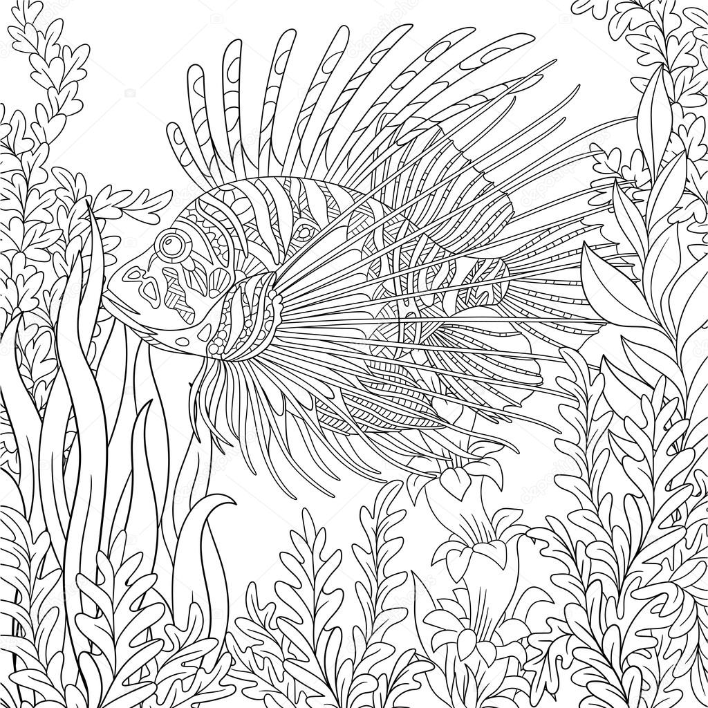 Zentangle Stylized Cartoon Zebrafish Lionfishpterois Volitans Is Swimming Around Plants Sketch For Adult Antistress Coloring Page