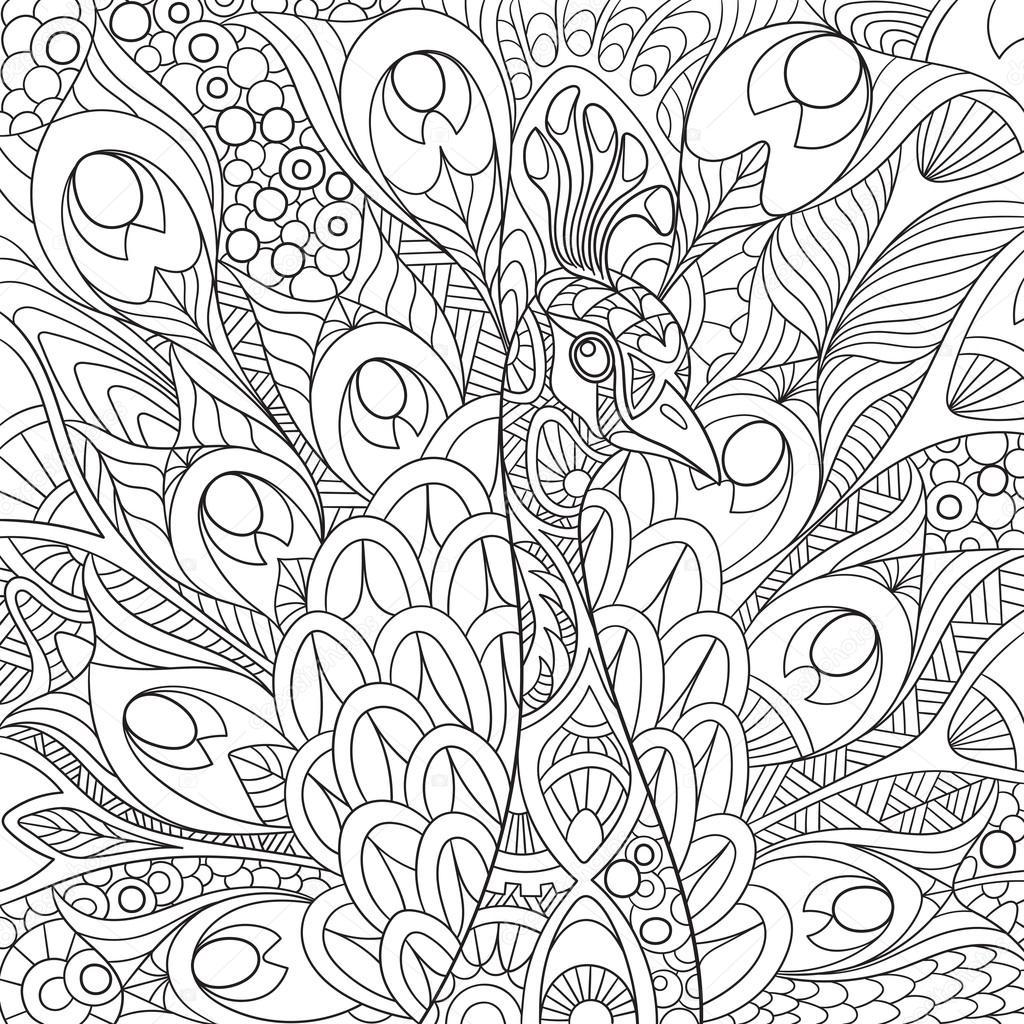 zentangle gestileerde pauw stockvector 169 sybirko 102651068