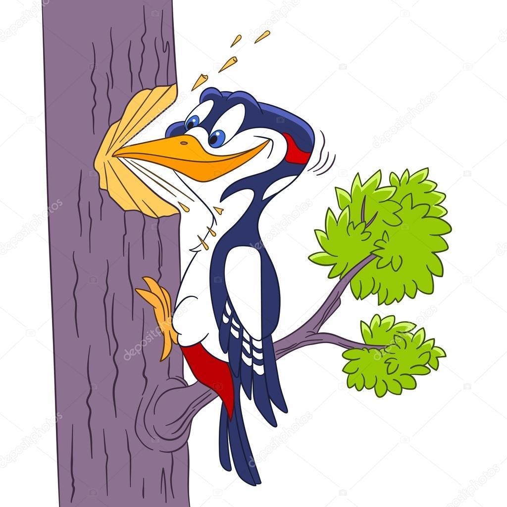 Dibujos Pajaro Carpintero Pájaro Carpintero De Dibujos Animados
