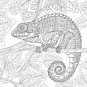 Zentangle stylizované Chameleon